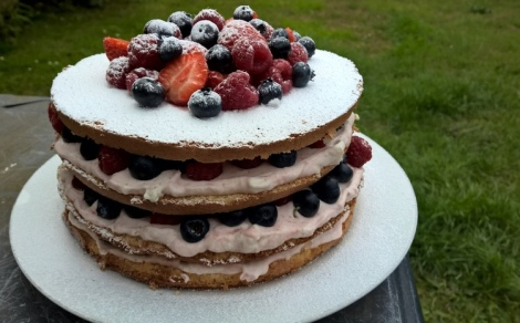 Summer party cake with berries